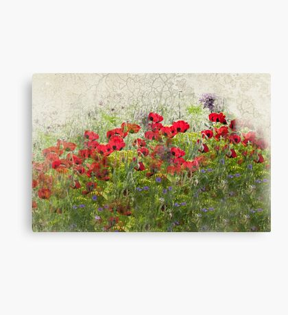 Poppy Grunge  Canvas Print
