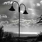 Light. by Paul Pasco