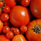 Tomatoes     by jojobob
