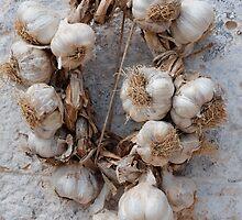 Garlic  by jojobob