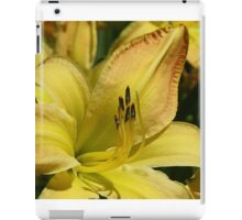 Gilded Lily iPad Case/Skin