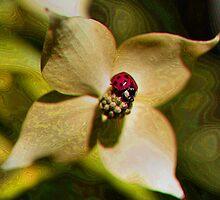 Ladybug Fantasyland by SmilinEyes
