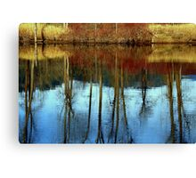 Mirror in the water Canvas Print