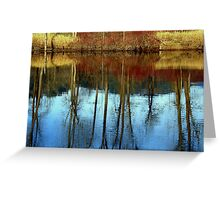 Mirror in the water Greeting Card