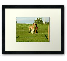 Caught Behind The Barn Framed Print