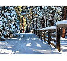 Just Outside Yosemite - #10 Photographic Print