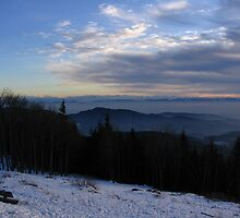 The Distant Alps, Hoch Blauen, Der Schwarzwald, Germany 2008 by J.D. Grubb