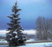 Winter Scene by Al Bourassa