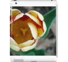 Spring's Flower iPad Case/Skin