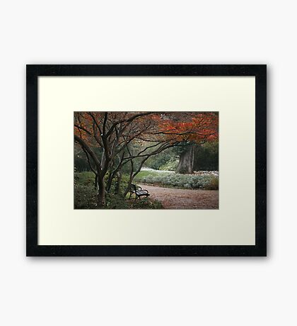 Touch of the Winter Framed Print