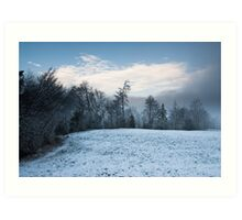 winter forest panorama Art Print