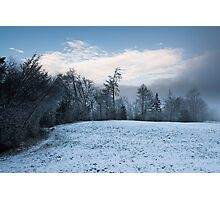winter forest panorama Photographic Print