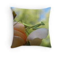 Here's Looking at You Kiddo Throw Pillow