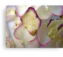 Rose Petals 2 Canvas Print
