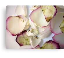 Rose Petals 4 Canvas Print