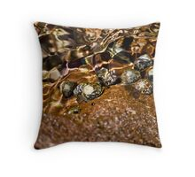 Snails in the water - Mediterranean Throw Pillow