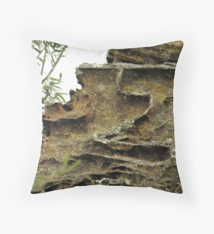 Mother Nature's abstract sculpture. Throw Pillow