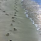Footprints In The Sand - Jurien Bay - WA by Colin  Williams Photography