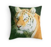 Tigers Head Throw Pillow