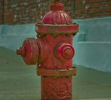 Fire Hydrant  by Zach  Schible