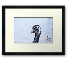 Evil Comes In Many Forms  Framed Print