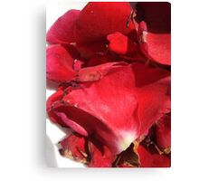 Red rose petals 2 Canvas Print