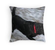 A Bird in the Mouth Throw Pillow