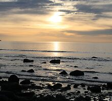 Time to reflect. Hallett Cove, S.A. by elphonline