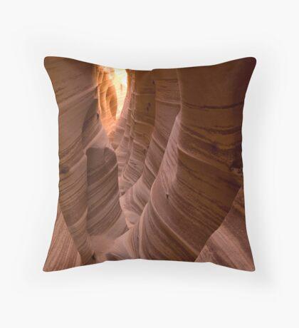 Zebra Slot II Throw Pillow