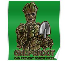 Only Groot Poster