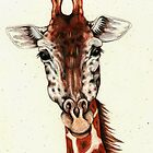 Giraffe Portrait by Catherine  Howell