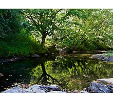 Peaceful place Photographic Print