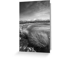 Grasses and Mountains Greeting Card