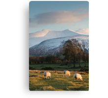 A Welsh Scene Canvas Print