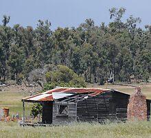 Collie shack # 149 by AndrewBentley