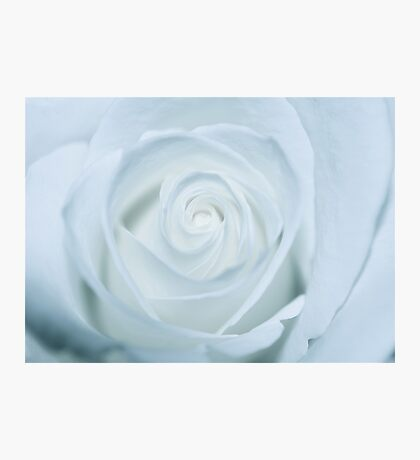 Pure White Photographic Print