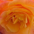 Orange Ice by Cheryl  Lunde