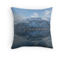 View over the Columbia Throw Pillow