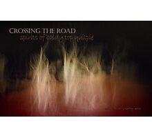 Crossing Quilpie Spirits © Photographic Print