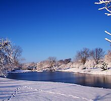 Winter Scene 1 by John Absher