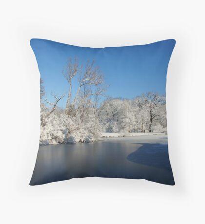 Winter Scene 2 Throw Pillow