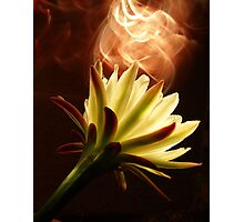 Blooming Fire Photographic Print