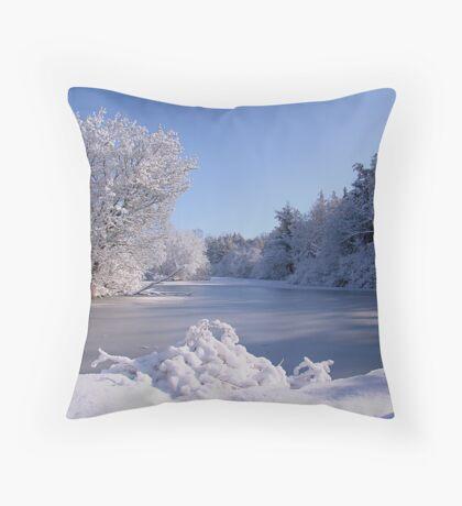 Winter Scene 3 Throw Pillow