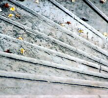 The Marble Steps of Life © Vicki Ferrari Photography by Vicki Ferrari