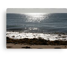 Culburra Beach Morning Canvas Print