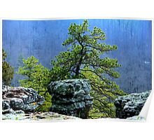 Pine View, Kings Bluff Pedestal Rock, NW Arkansas. Poster