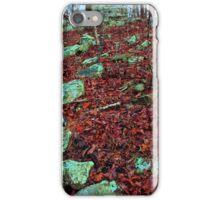 Emerald Native Path,  Kings Bluff Pedestal Rock, NW Arkansas. iPhone Case/Skin