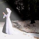 TeriLee - Prayer of the Woman Warrior by Judi Taylor