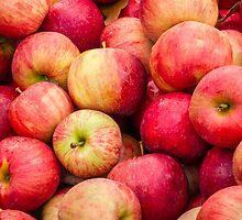 Apple Bin by Kenneth Keifer