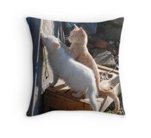 Kittens Playing with Tent Rope  Throw Pillow